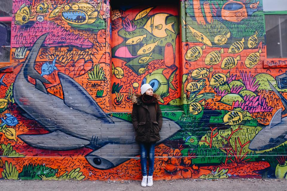 Con đường nghệ thuật vẽ đường phố ở Toronto ạ.